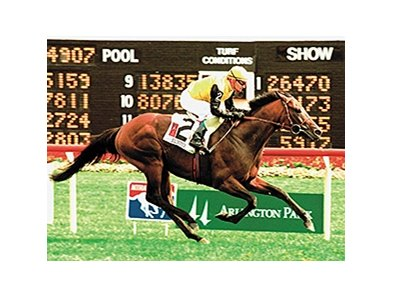 Silvano in the 2001 Arlington Million.