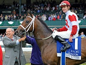 Derby Kitten Aims for Preakness