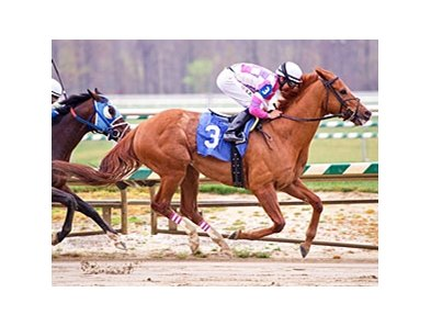 Eighttofasttocatch is the 9-5 favorite in the Maryland Million Classic at Laurel Park Oct. 6.