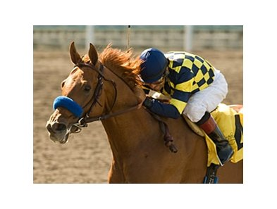 "Misremembered, second in his last three starts, breaks from post 13 in the Santa Anita Handicap.<br><a target=""blank"" href=""http://www.bloodhorse.com/horse-racing/photo-store?ref=http%3A%2F%2Fpictopia.com%2Fperl%2Fgal%3Fprovider_id%3D368%26ptp_photo_id%3D8342024%26ref%3Dstory"">Order This Photo</a>"
