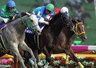 Verxina wins the Victoria Mile in Japan.