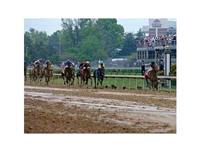 "Mine That Bird leaves the rest behind in the Kentucky Derby.<br><a target=""blank"" href=""http://www.bloodhorse.com/horse-racing/photo-store?ref=http%3A%2F%2Fpictopia.com%2Fperl%2Fgal%3Fprovider_id%3D368%26ptp_photo_id%3D8064024%26ref%3Dstory"">Order This Photo</a>"