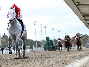 Grey Papillon wins the 2010 LA Champions Day Handicap.