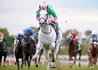 Discreet Marq Back in Beaugay