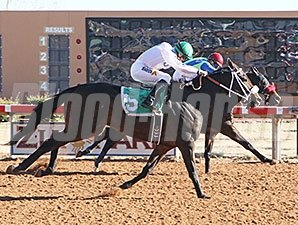 Isn't He Clever wins the 2014 Zia Park Distance Championship Handicap.
