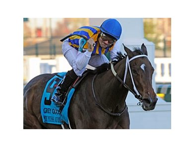 "My Miss Aurelia<br><a target=""blank"" href=""http://www.bloodhorse.com/horse-racing/photo-store?ref=http%3A%2F%2Fpictopia.com%2Fperl%2Fgal%3Fprovider_id%3D368%26ptp_photo_id%3D9728850%26ref%3Dstory"">Order This Photo</a>"