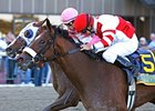 Havre de Grace Gets Serious for Azeri Return