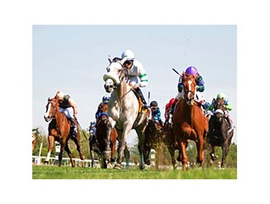 "Winter Memories flies home to win the Appalachian at Keeneland.<br><a target=""blank"" href=""http://www.bloodhorse.com/horse-racing/photo-store?ref=http%3A%2F%2Fpictopia.com%2Fperl%2Fgal%3Fprovider_id%3D368%26ptp_photo_id%3D9499494%26ref%3Dstory"">Order This Photo</a>"