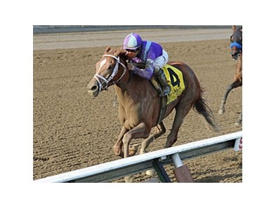 "Princess of Sylmar rolls to victory in the Alabama Stakes.<br><a target=""blank"" href=""http://photos.bloodhorse.com/AtTheRaces-1/at-the-races-2013/27257665_QgCqdh#!i=2706410329&k=xJmb5Qm"">Order This Photo</a>"
