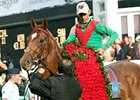 John Velazquez and Animal Kingdom.
