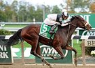 Princess Violet 