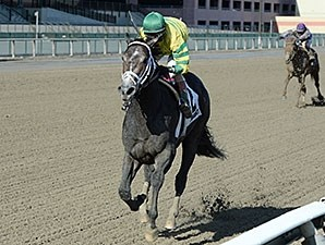 Blofeld wins the Nashua Stakes.