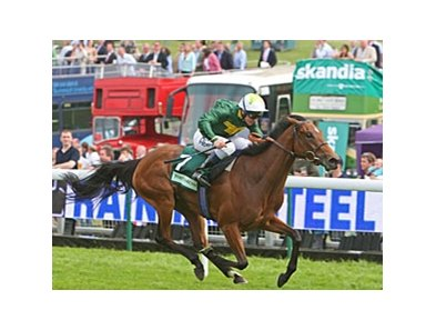 Look Here started in the Epsom Oaks at nearly 28-1 but she was a natural to win it.