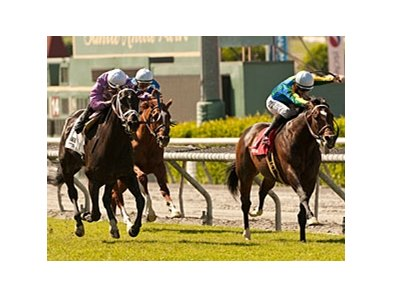 Interaction wins the San Juan Capistrano Handicap.
