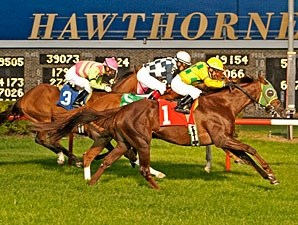 Suntracer wins the 2012 Robert F. Carey Memorial.
