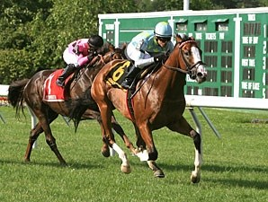Freud's Honour wins the 2011 Choice Stakes.