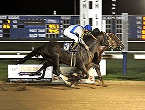 Heavy On Themister wins the 2012 Evangeline Mile Handicap.