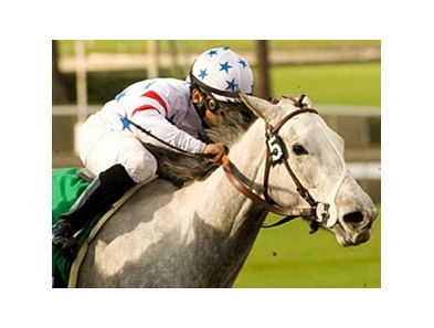 "Champion Stardom Bound faces 9 in the Santa Anita Oaks.<br><a target=""blank"" href=""http://www.bloodhorse.com/horse-racing/photo-store?ref=http%3A%2F%2Fpictopia.com%2Fperl%2Fgal%3Fprovider_id%3D368%26ptp_photo_id%3D7685870%26ref%3Dstory"">Order This Photo</a>"