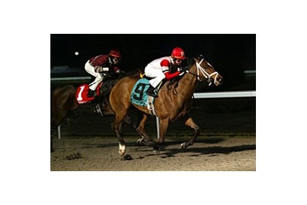 U. S. Cavalry came from well off the pace to catch Mr. Harry in deep stretch in the Turfway Park Prevue.