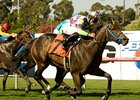"Leroy's Dynameaux holds off favored Bogie by a neck to win the Will Rogers Stakes at Hollywood Park. <br><a target=""blank"" href=""http://www.bloodhorse.com/horse-racing/photo-store?ref=http%3A%2F%2Fpictopia.com%2Fperl%2Fgal%3Fprovider_id%3D368%26ptp_photo_id%3D9074386%26ref%3Dstory"">Order This Photo</a>"