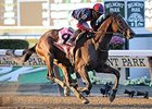 "In last year's Jockey Club Gold Cup, Tonalist rallied from ninth to score a 1 3/4-length victory.<br><a target=""blank"" href=""http://photos.bloodhorse.com/AtTheRaces-1/At-the-Races-2014/i-2RMHvrn"">Order This Photo</a>"