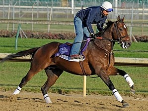Jeramino at Churchill Downs, November 1, 2001.