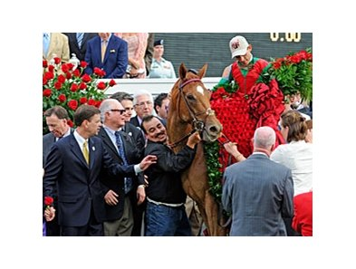 2011 Kentucky Derby winner Animal Kingdom.