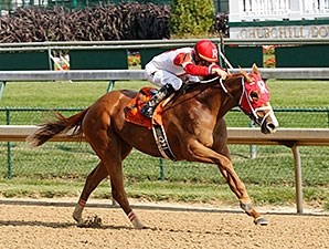 Thank You Marylou wins the 2014 Dogwood Stakes.