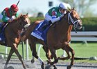 "Winning Cause has won all 3 of his Keeneland starts.<br><a target=""blank"" href=""http://photos.bloodhorse.com/AtTheRaces-1/at-the-races-2013/27257665_QgCqdh#!i=2467745510&k=Pgx7J3w"">Order This Photo</a>"