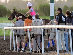 Game On Dude - Dubai 2012