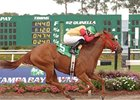 Awesome Chic explodes to a Florida Oaks victory.