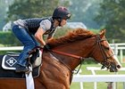 "Preakness winner Shackleford is favored in the Haskell.<br><a target=""blank"" href=""http://www.bloodhorse.com/horse-racing/photo-store?ref=http%3A%2F%2Fpictopia.com%2Fperl%2Fgal%3Fprovider_id%3D368%26ptp_photo_id%3D9546219%26ref%3Dstory"">Order This Photo</a>"