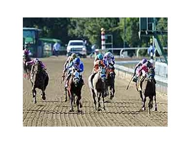 "New Year's Day, (inside) and Martin Garcia, run by Havana, (L) to win the 2013 Breeders' Cup Juvenile. <br><a target=""blank"" href=""http://photos.bloodhorse.com/BreedersCup/2013-Breeders-Cup/Juvenile/33149927_s6DS8h#!i=2878340522&k=2CzrbrM"">Order This Phot"