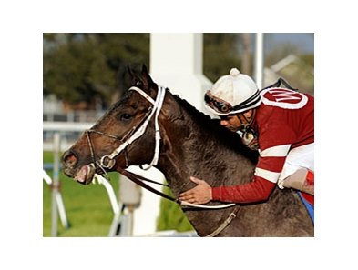 "Pyro and jockey Shaun Bridgmohan after the Louisiana Derby (gr. II).<br><a target=""blank"" href=""http://www.bloodhorse.com/horse-racing/photo-store?ref=http%3A%2F%2Fpictopia.com%2Fperl%2Fgal%3Fprovider_id%3D368%26ptp_photo_id%3D3811572%26ref%3Dstory"">Order This Photo</a>"