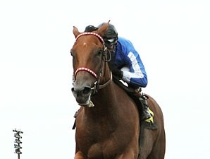 Heliskier wins the 2012 Minnesota Derby.