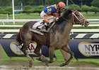 "Notacatbutallama won the 2013 National Museum of Racing and Hall of Fame Stakes.<br><a target=""blank"" href=""http://photos.bloodhorse.com/AtTheRaces-1/at-the-races-2013/27257665_QgCqdh#!i=2690239974&k=nHQcp8c"">Order This Photo</a>"