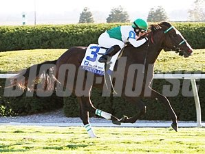 Fugitive Angel wins the 2010 Pin Oak Valley View.