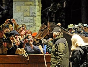 Zenyatta's Fans Brave the Cold for Send-off