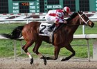 Havre de Grace won the New Orleans Ladies Stakes on March 17 by 4 1/2 lengths.