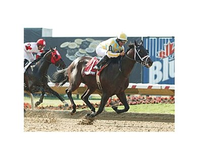 Prospective and Jermaine Bridgmohan secure victory in the Ohio Derby.