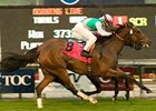 Proviso started 2010 off with a victory in the grade I Frank Kilroe Mile at Santa Anita.