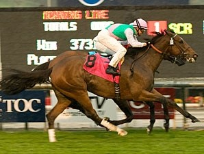 Proviso wins the 2010 Kilroe Mile.