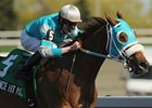 Essence Hit Man won the 2012 Vigil Stakes.