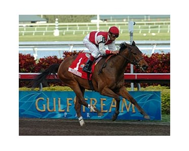 "American County cruises to victory in the Sunshine Millions Oaks.<br><a target=""blank"" href=""http://www.bloodhorse.com/horse-racing/photo-store?ref=http%3A%2F%2Fpictopia.com%2Fperl%2Fgal%3Fprovider_id%3D368%26ptp_photo_id%3D3398777%26ref%3Dstory"">Order This Photo</a>"