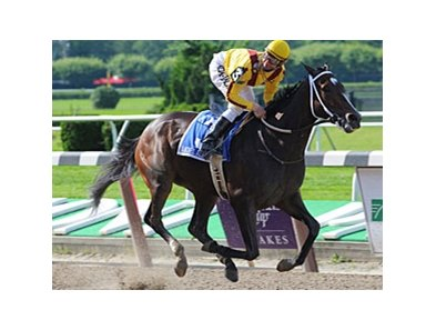 "The Haskell is the next scheduled stop for Mother Goose winner Rachel Alexandra.<br><a target=""blank"" href=""http://www.bloodhorse.com/horse-racing/photo-store?ref=http%3A%2F%2Fpictopia.com%2Fperl%2Fgal%3Fprovider_id%3D368%26ptp_photo_id%3D8279198%26ref%3Dstory"">Order This Photo</a>"