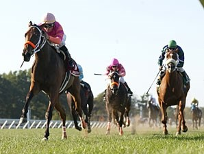 A Brilliant Idea wins the 2010 Junior Champion Stakes.