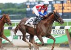 Swift Temper Tries Polytrack in Spinster