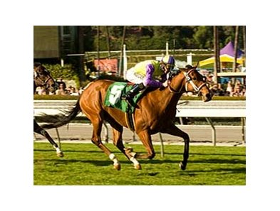 "Battle of Hastings is a clear winner in the Davona Dale. <br><a target=""blank"" href=""http://www.bloodhorse.com/horse-racing/photo-store?ref=http%3A%2F%2Fgallery.pictopia.com%2Fbloodhorse%2Fgallery%2F69713%2Fphoto%2Fbloodhorse%3A7836325%2F%3Fo%3D1"">Order This Photo</a>"
