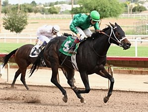 Page Springs wins the 2012 Princess of Palms Stakes.