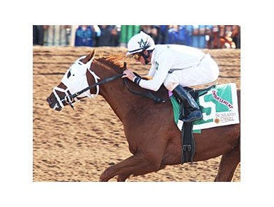 Robby Albarado rode Endorsement to victory in the Sunland Derby.